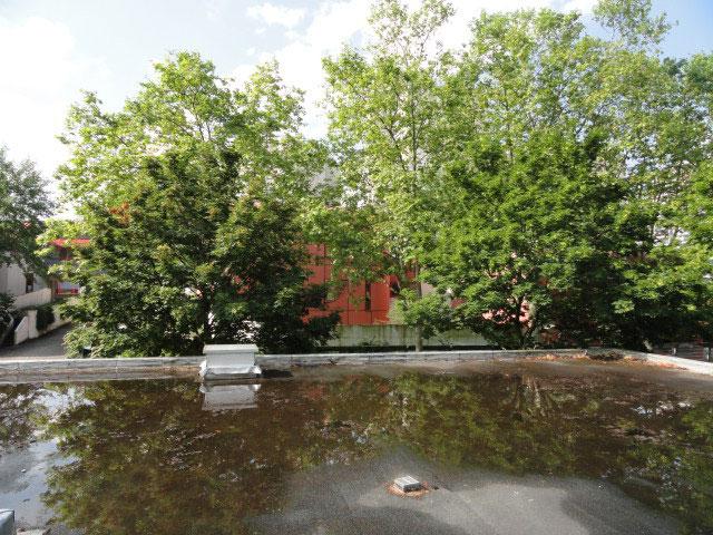 eau stagnante toiture-terrasse